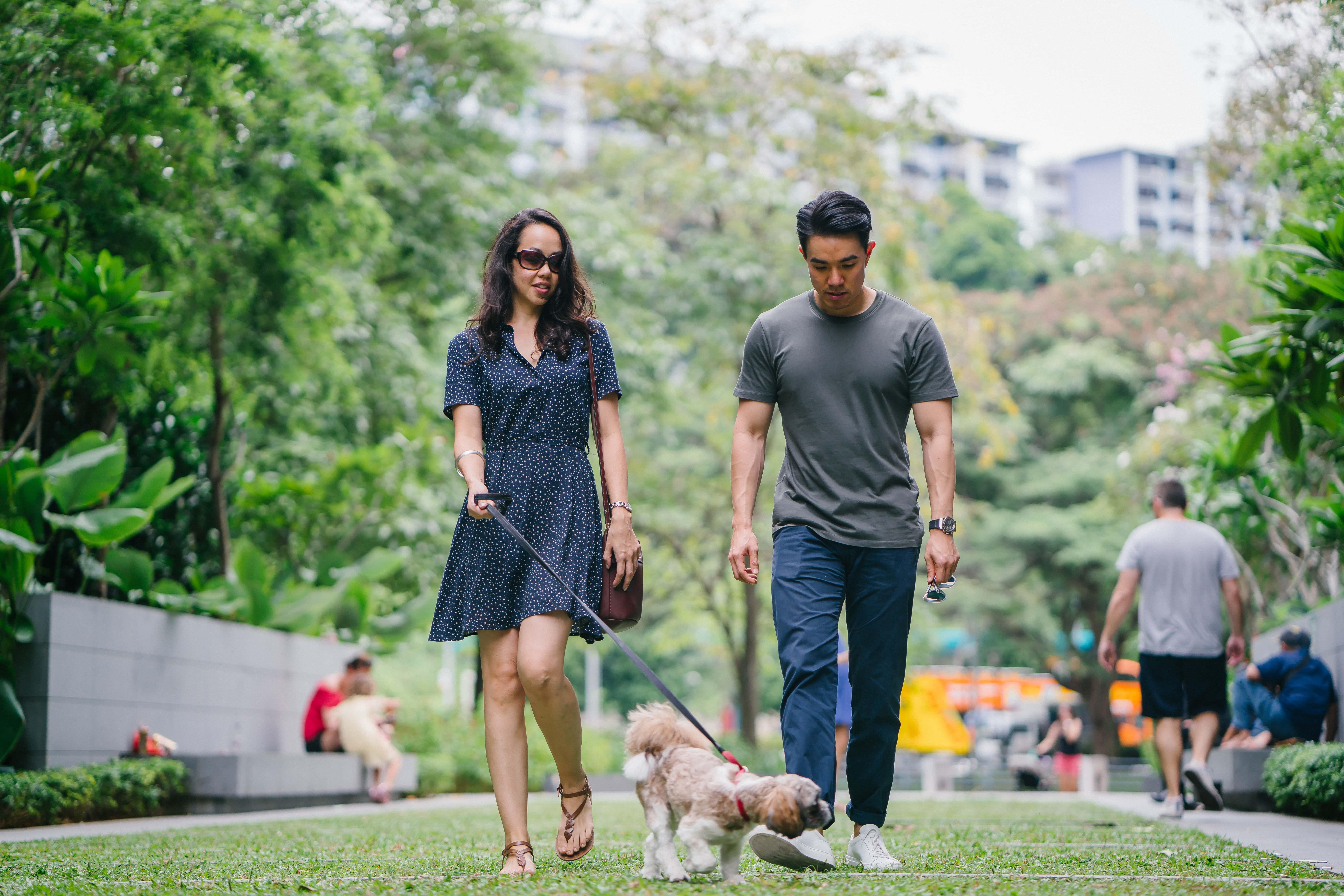 Spaziergang im Park mit Hund