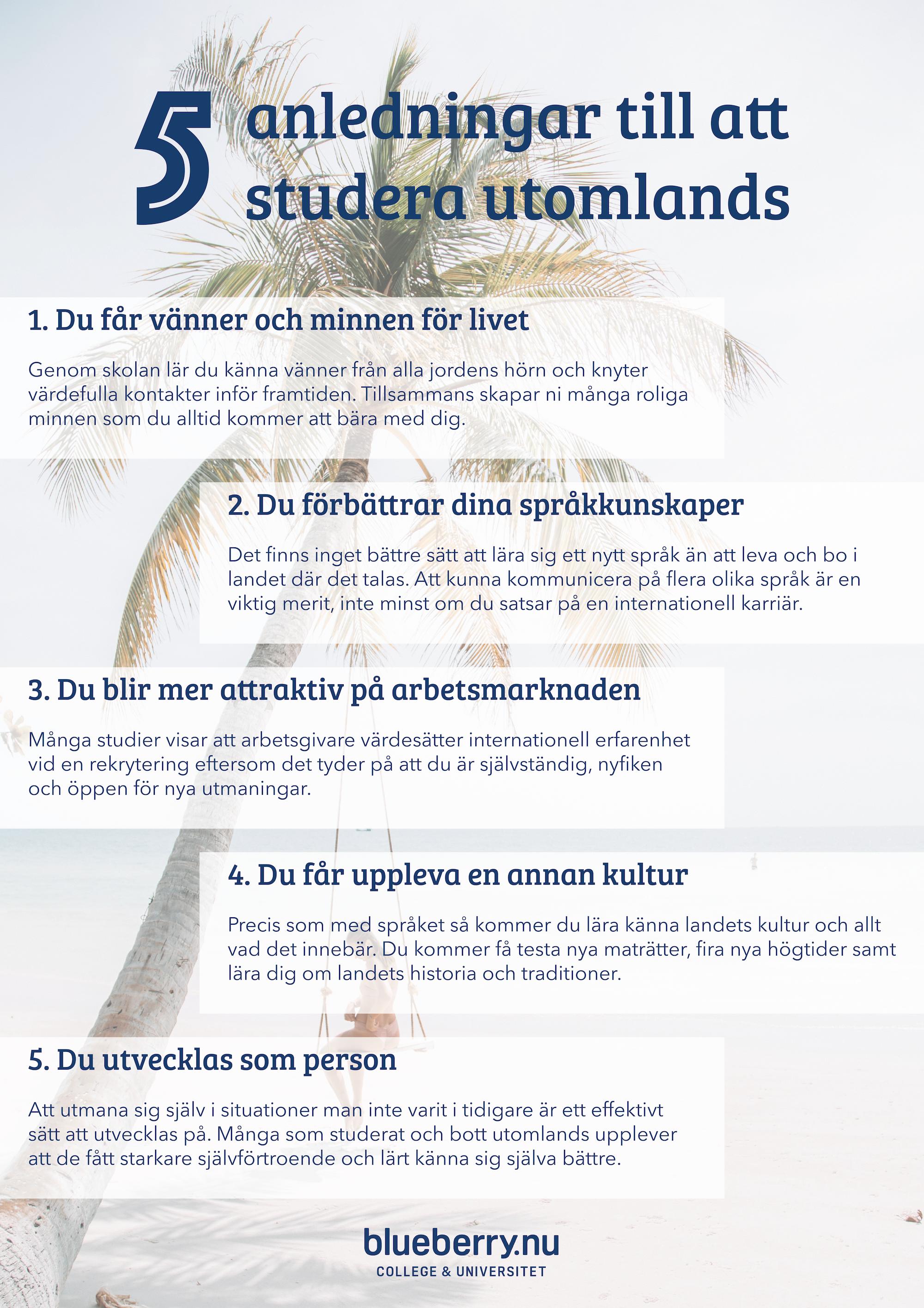 studera utomlands anledningar