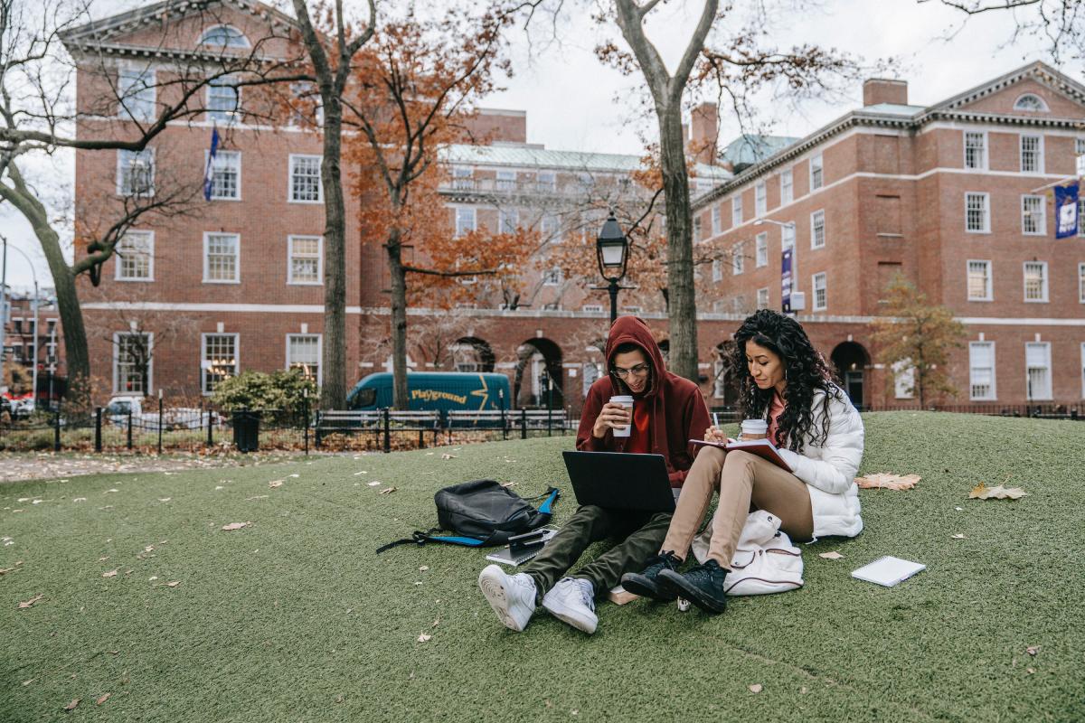 Två vänner som sitter och pluggar på en gräsmatta